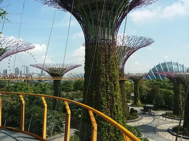 シンガポール旅行6